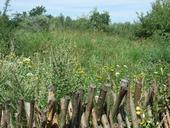 naturpark015
