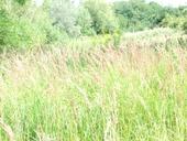 naturpark019