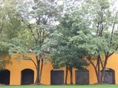 clique-naturpark-suedgelaende-berlin-02
