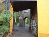 clique-naturpark-suedgelaende-berlin-12