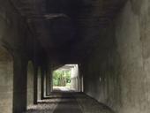 clique-naturpark-suedgelaende-berlin-15