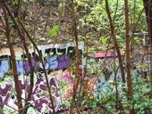 clique-naturpark-suedgelaende-berlin-26