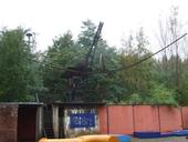 clique-naturpark-suedgelaende-berlin-44
