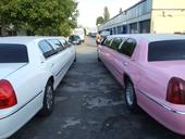 clique-zu-besuch-bei-beverly-cars-10