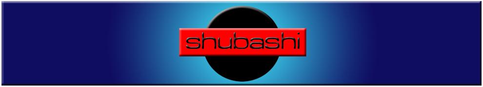 shubashi_online_wordpress_3d