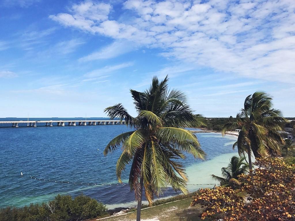 Miami - Liebe auf den ersten Blick